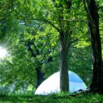 和歌とキャンプ